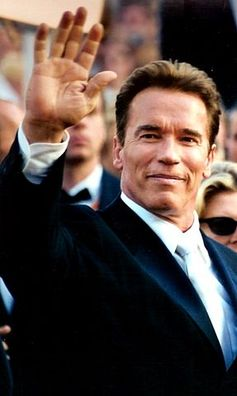 Explaining Schwarzenegger – men, biceps and the politics of getting what you want