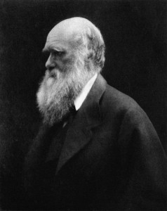 Charles Darwin in 1868. The white-bearded patriarch that haunts every creationist and reason-denier. By Julia Margaret Cameron, Wikimedia Commons.